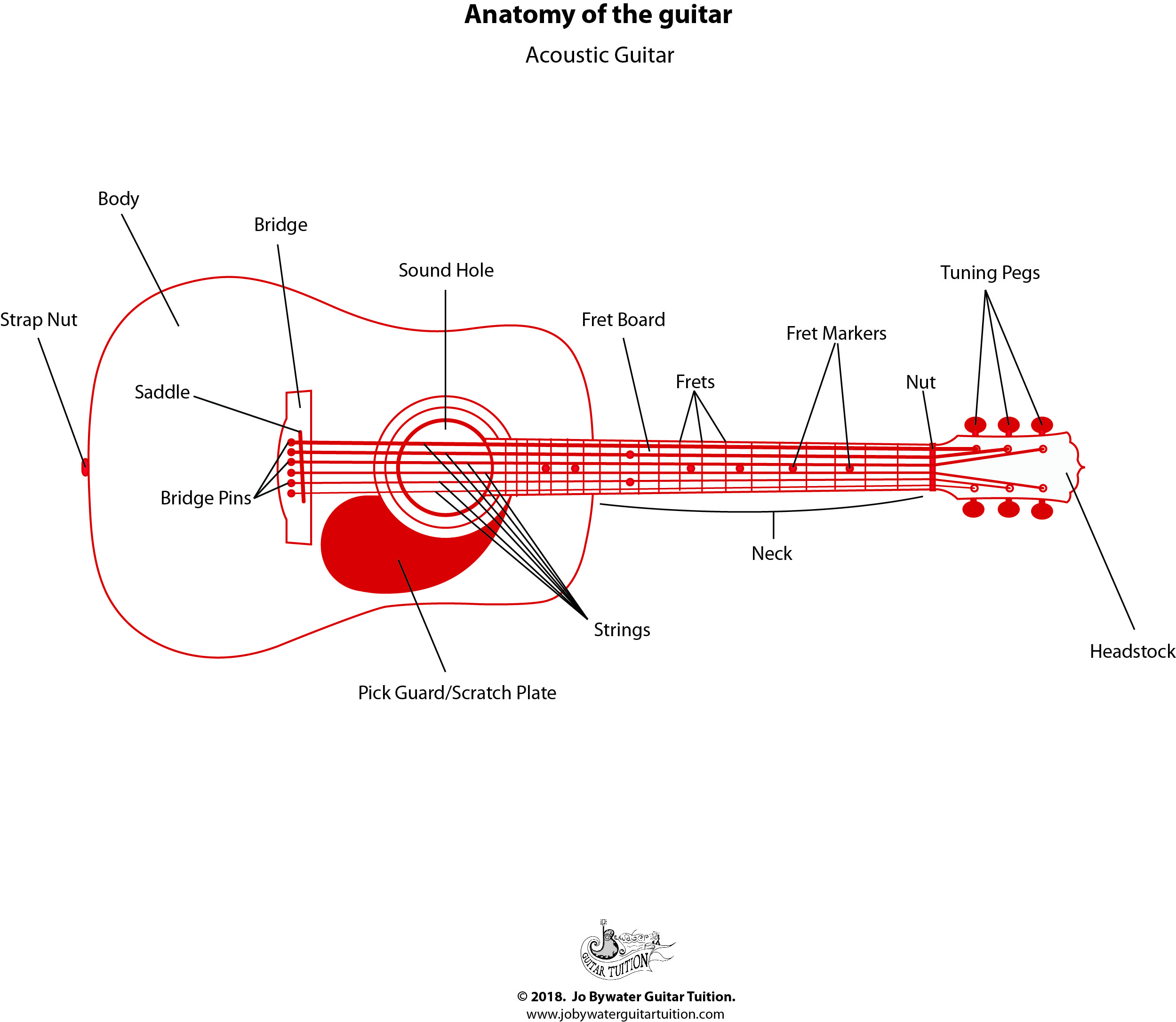 Acoustic Guitar - Labelled Diagram