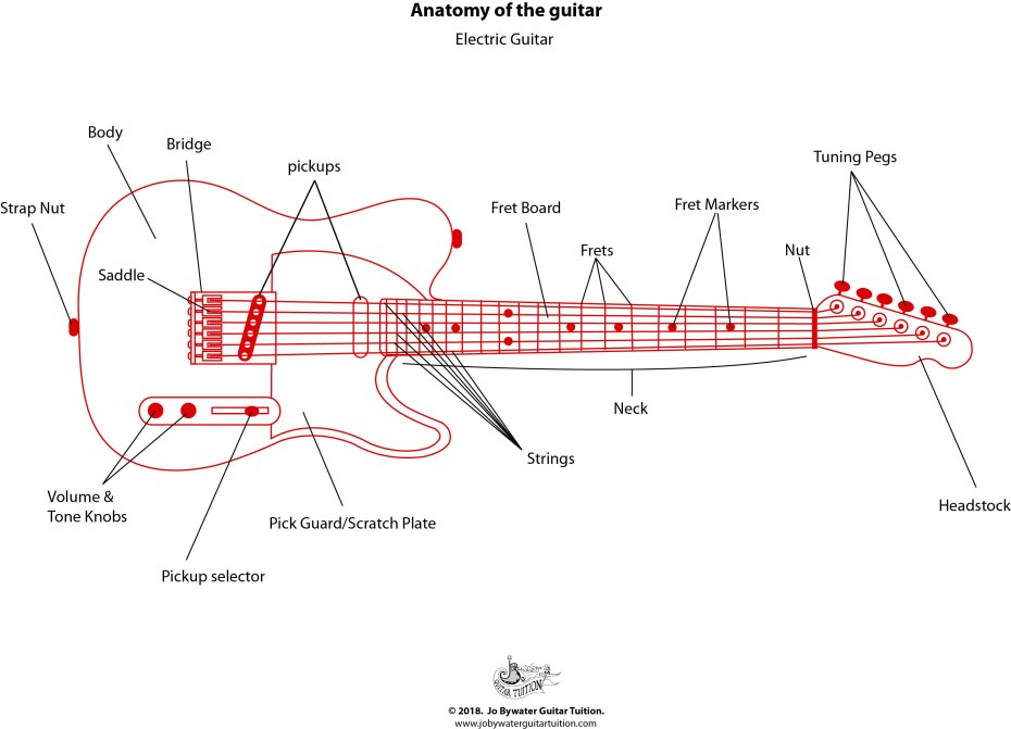 Electric Guitar - Labelled Diagram